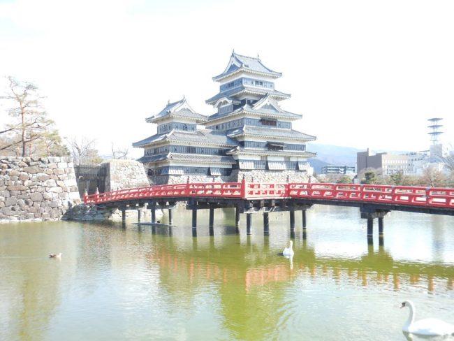 松本城『藤棚工事』の裏側を見てみませんか?